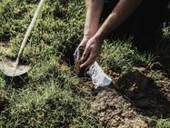 Учёные решили закопать трусы по всей Швейцарии