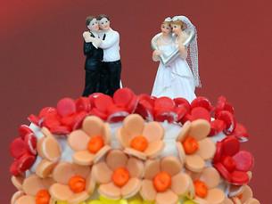 Закон о «Браке для всех» вынесут на референдум