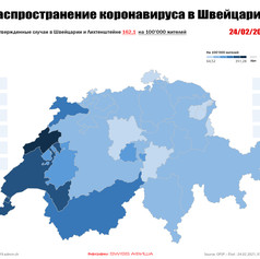 CovidCase_geography_24.02.21.jpg