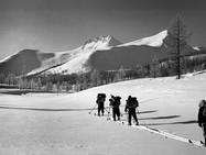 Швейцарское исследование раскрывает тайну перевала Дятлова.