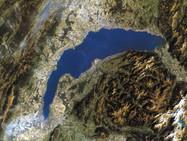 Женевское озеро богато лекарствами