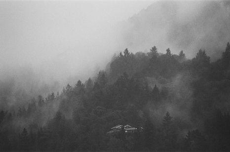 Mount Tamalpais, CA