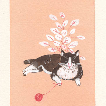 The cat in Kyoto