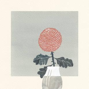My Moon Flower