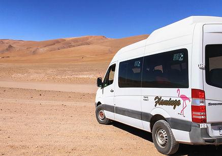 flamingo travel agency, salar de tara, san pedrode atacama