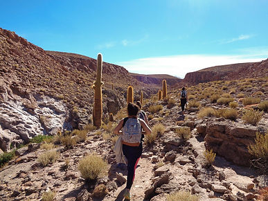 Trek guatine, Flamingo travel agency, San Pedro de atacama