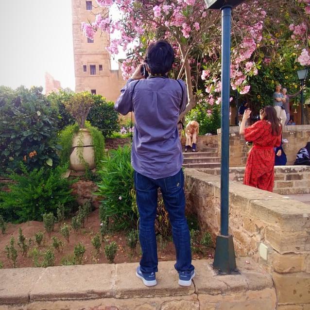 Gardens at the Kasbah Udayas