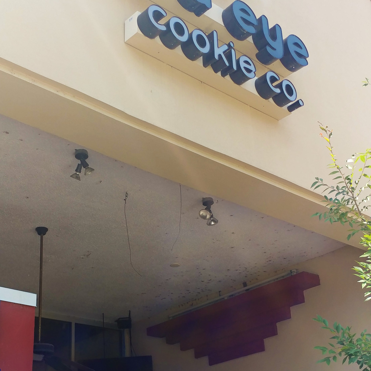 Red Eye Cookie Co.