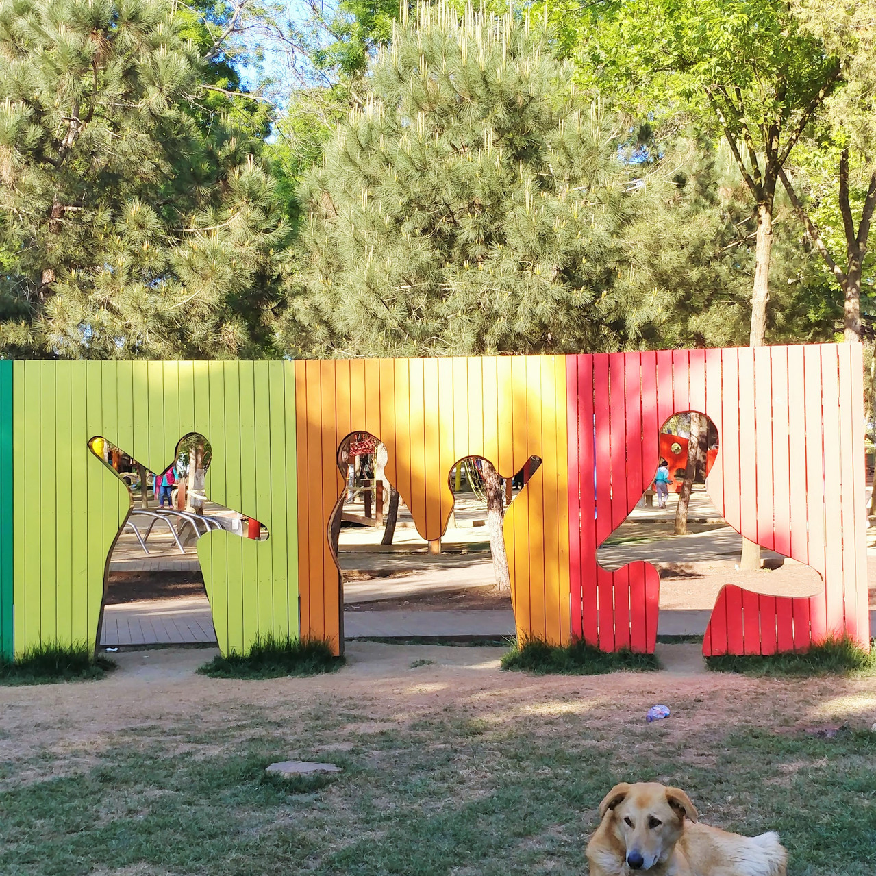 Dog at Emirgan Park