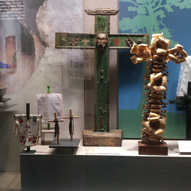 ANTHROPOLOGY MUSEUM (50)