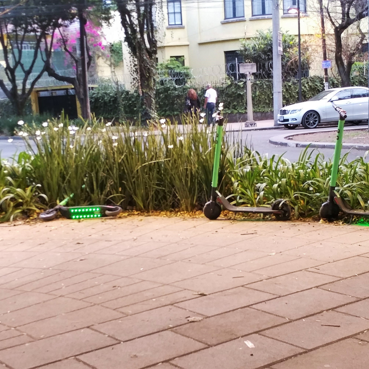 Scooters in Condesa