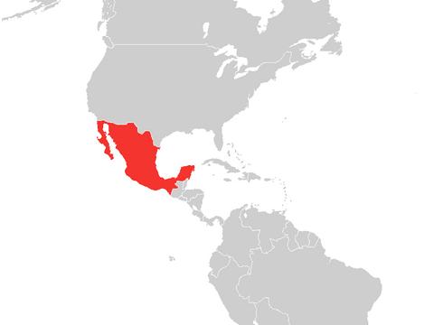 Hola, Ciudad de México