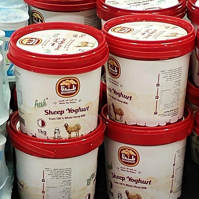 Sheep yoghurt