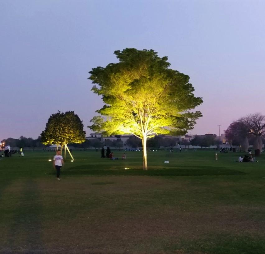 Aspire Park