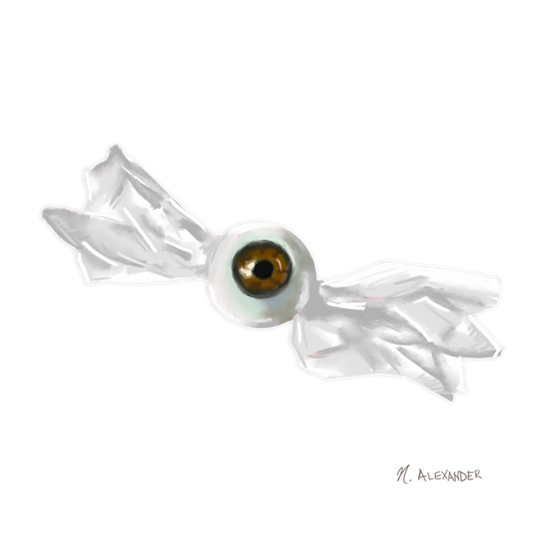 Eye Wrapper