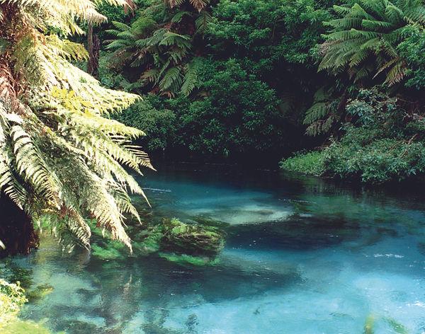 Blue Springs .jpg