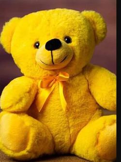 9 in yellow bear