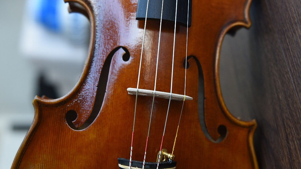 4/4 Handcrafted European Tone Wood Violin (One-Piece Back)