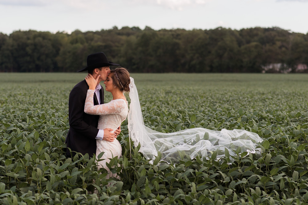 Bride and groom in Sussex County soybean field on the property of Vanderwende's stunning wedding venue