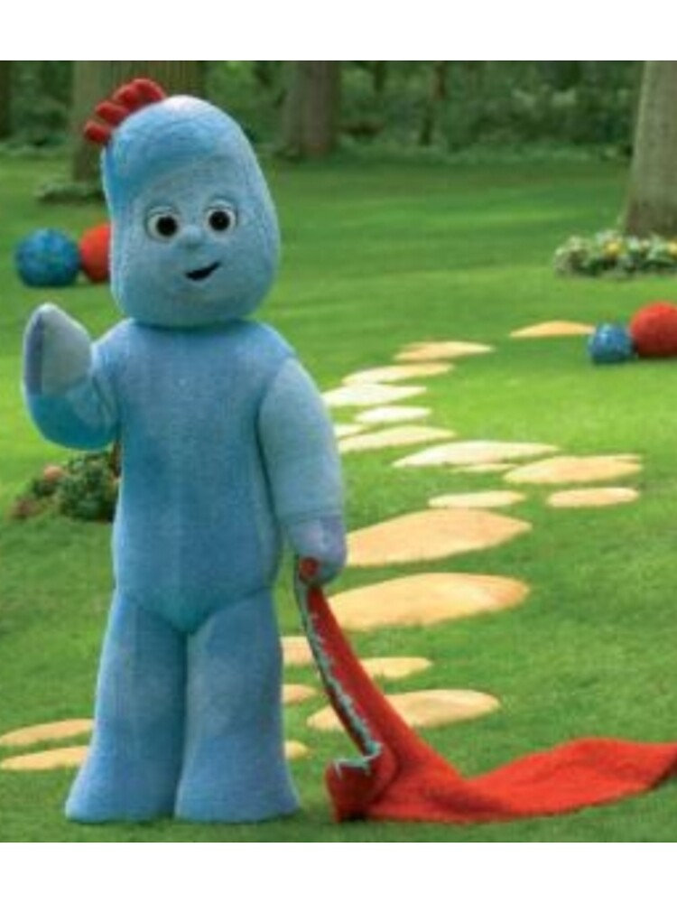 Picnic in the garden with Iggle Piggle