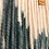 Thumbnail: Spruce
