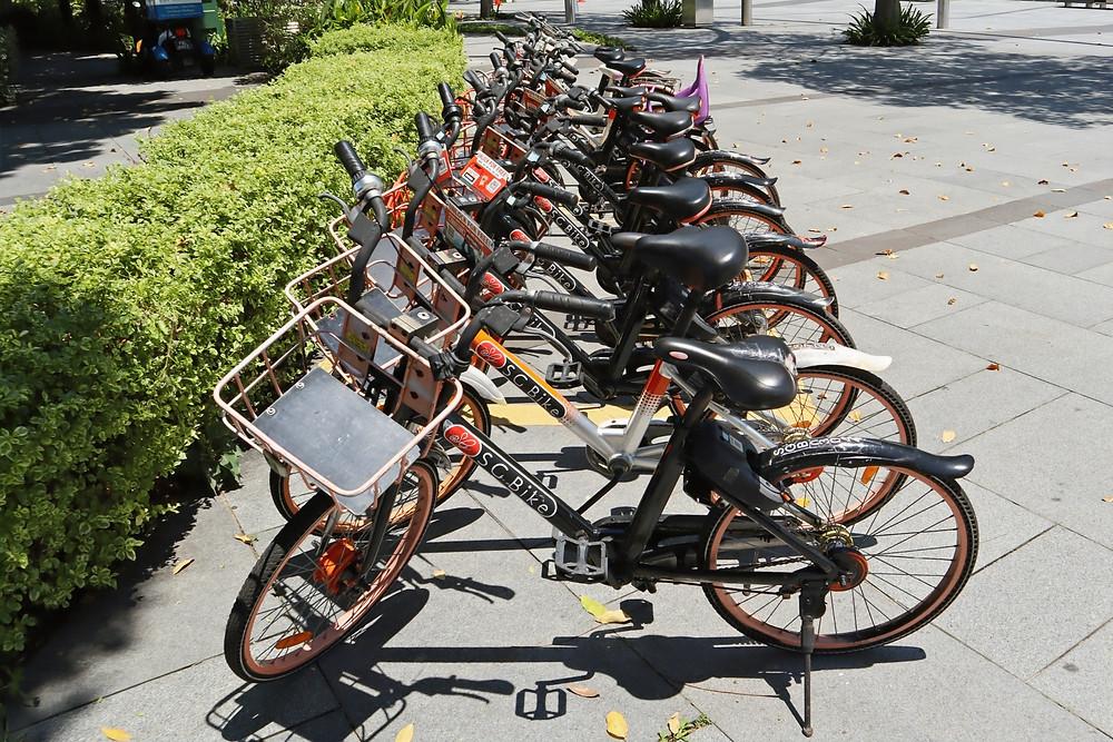SG Bike in a designated docking spot!