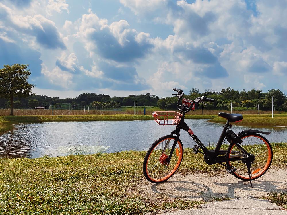 Bicycle parked at Lorong Halus Wetland