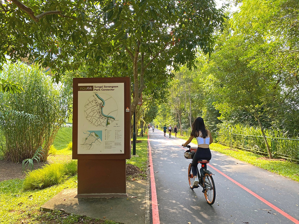 Cycling along Sungei Serangoon Park Connector