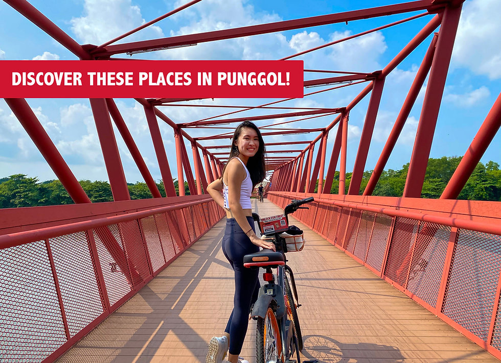 6 Places to Visit as You Cycle Through Punggol!🚲🌇