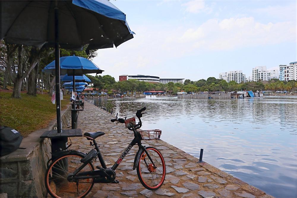 Pasir Ris Fishing Pond at Pasir Ris Town Park