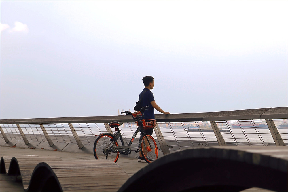 Man looking into the seaview with a bicycle beside him