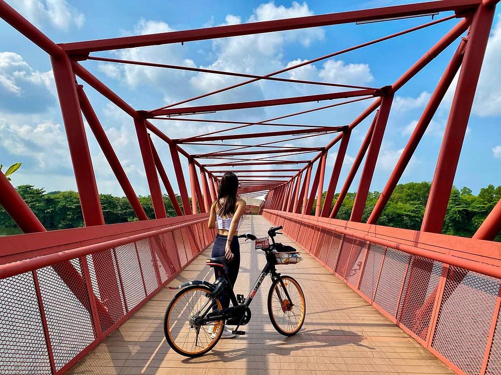 Cycling at Lorong Halus Bridge