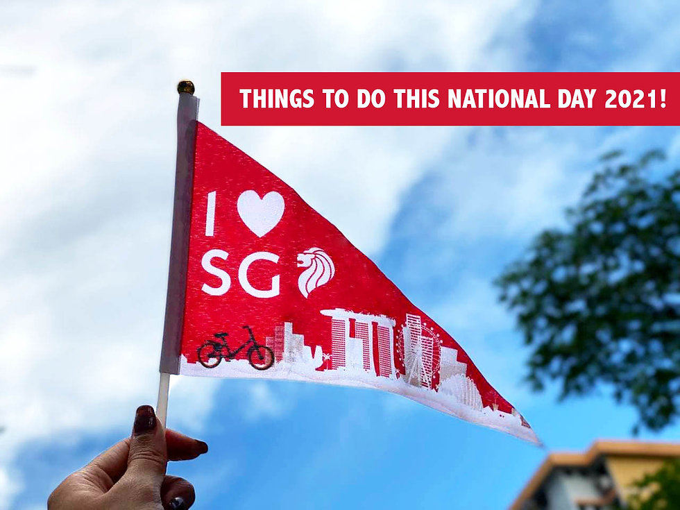 Things to do this National Day 2021!✨
