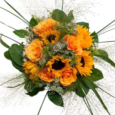 Profitez des derniers tournesols, offrez  de jolies fleurs.