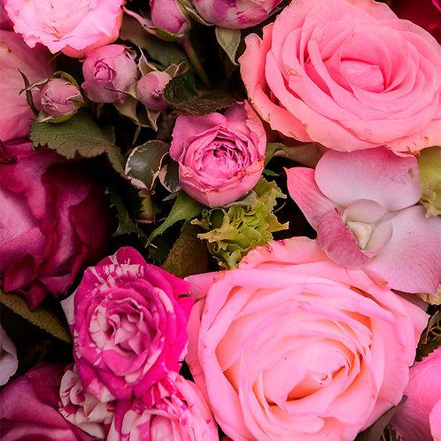 Roses-fuchsia-livraison-Paris