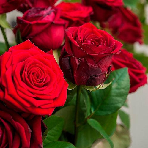 10 roses rouges et plus