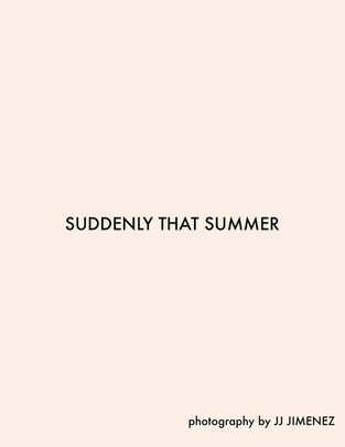 SUDDENLY THAT SUMMER