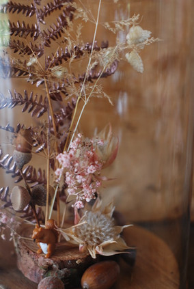 Detail_Herbstwelt