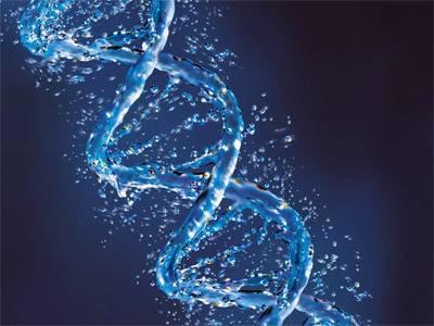 Segredos em Seu DNA