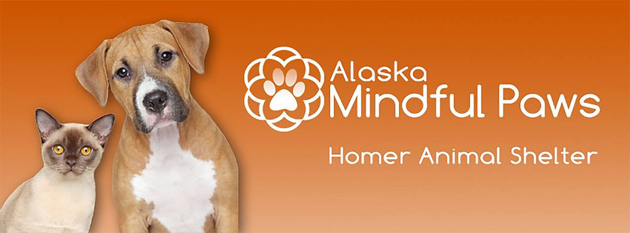 Alaska Mindful Paws Homer Animal Shelter