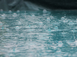 Does Rain Water Damage Your Paint?