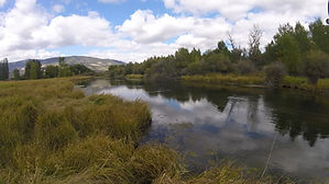62 - Armstrong Spring Creek, Livingston,