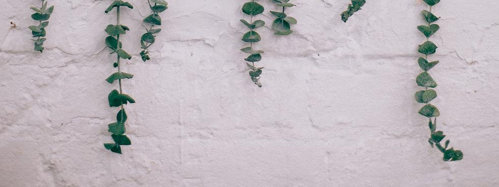pexels-maria-orlova-4915972.jpg