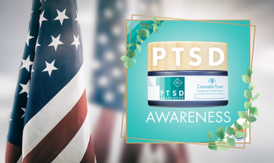 PTSD Banner.png