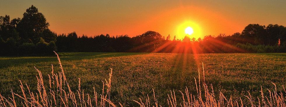 SunriseField.jpg