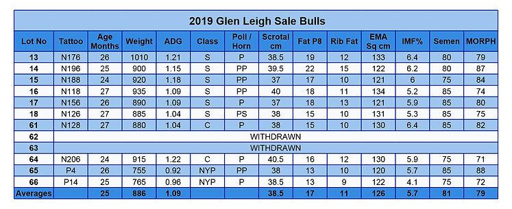 2019 Sale bulls.jpg