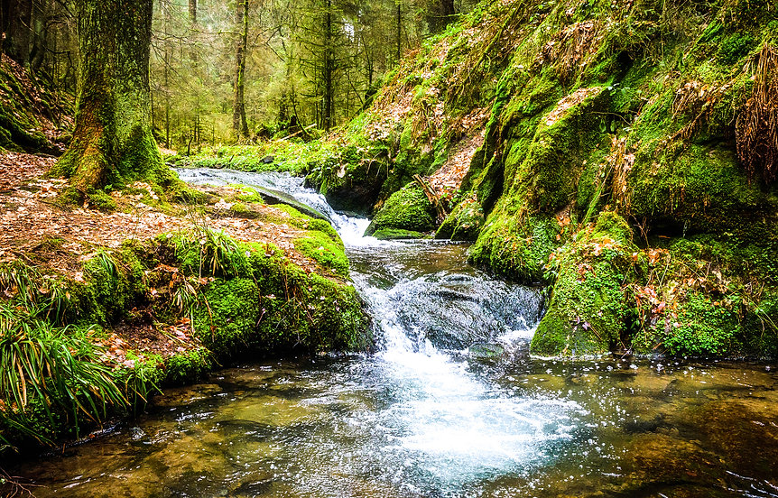 Waterfall green forest river stream land