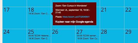 kalender Zoom.png