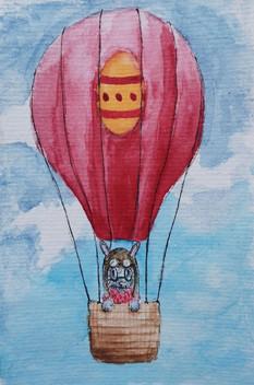 Martin en montgolfière