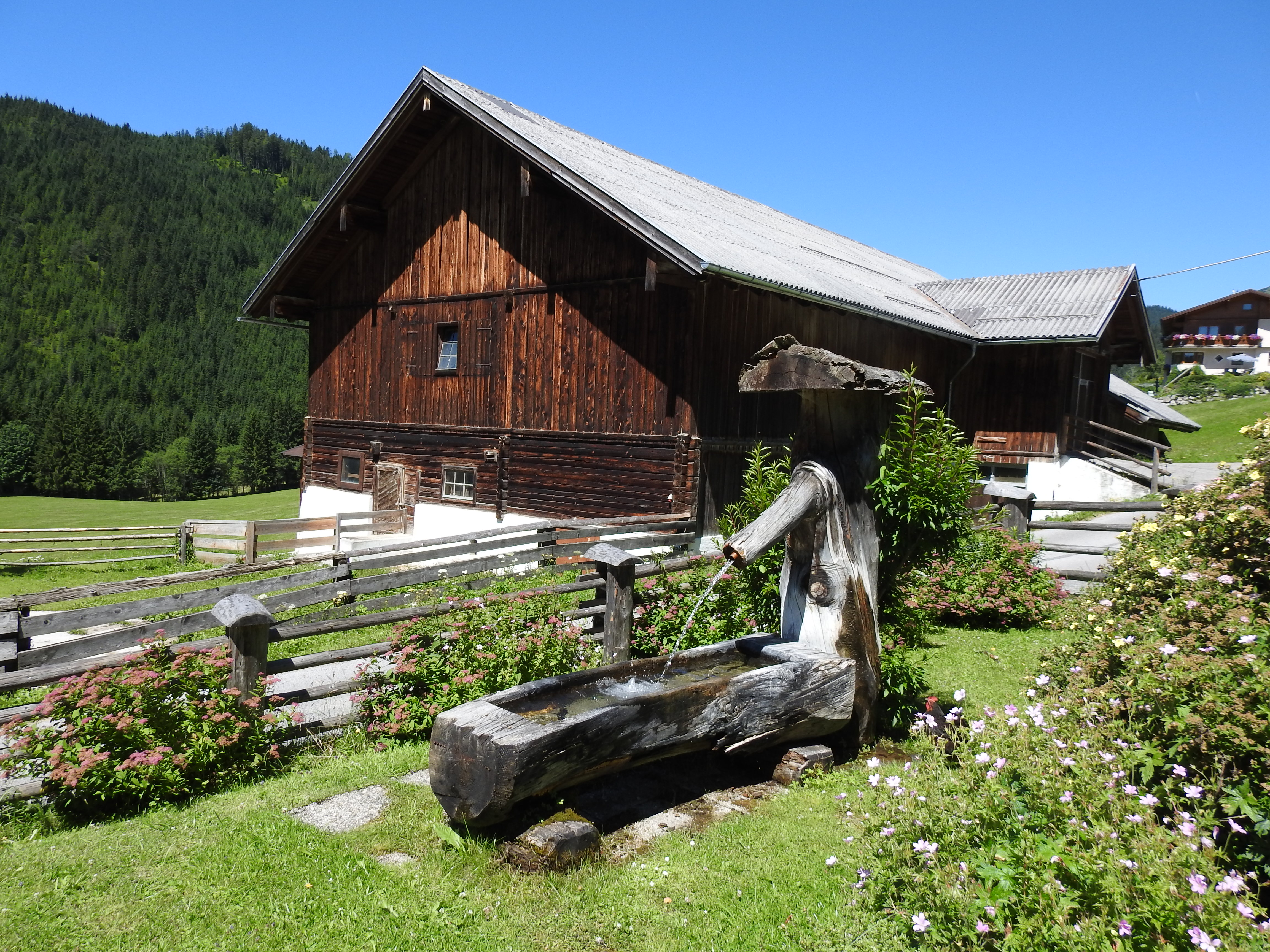 Stall Löckenwaldhof